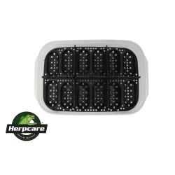 Contenitore per incubazione uova Herpcare 12 slot