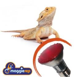 Lampada INFRAROSSI Alogena 100W Infra Rep