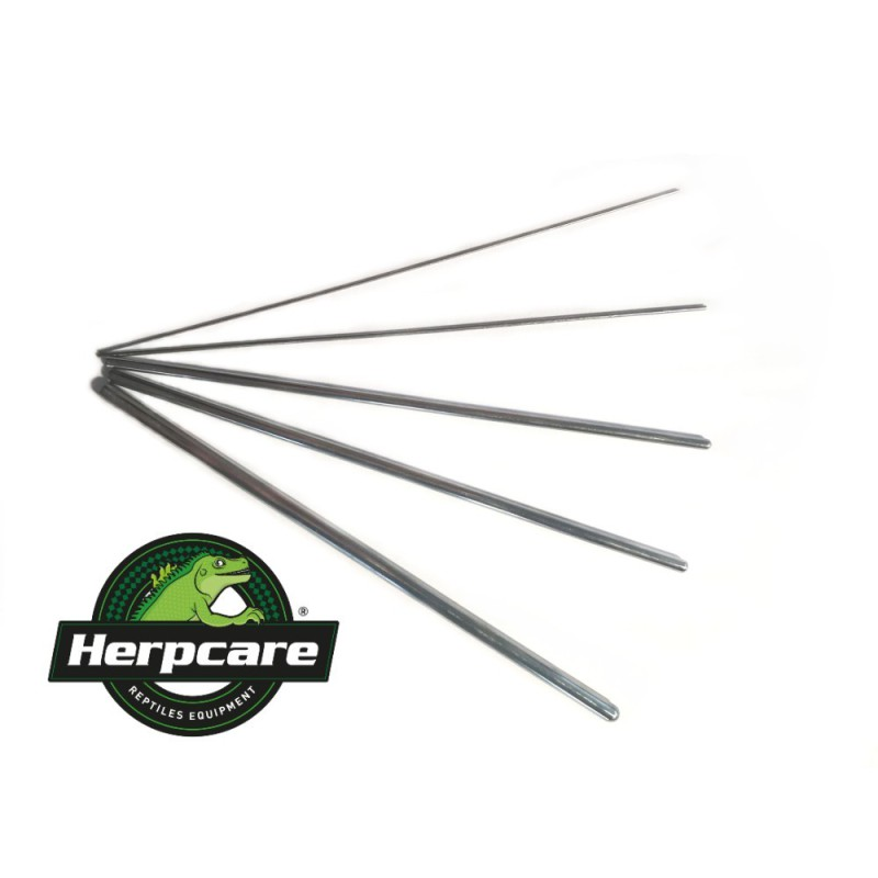 Herpcare 5x Sexing Probes